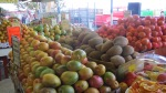 Allerlei soorten fruit, dit is maar een klein deel haha!
